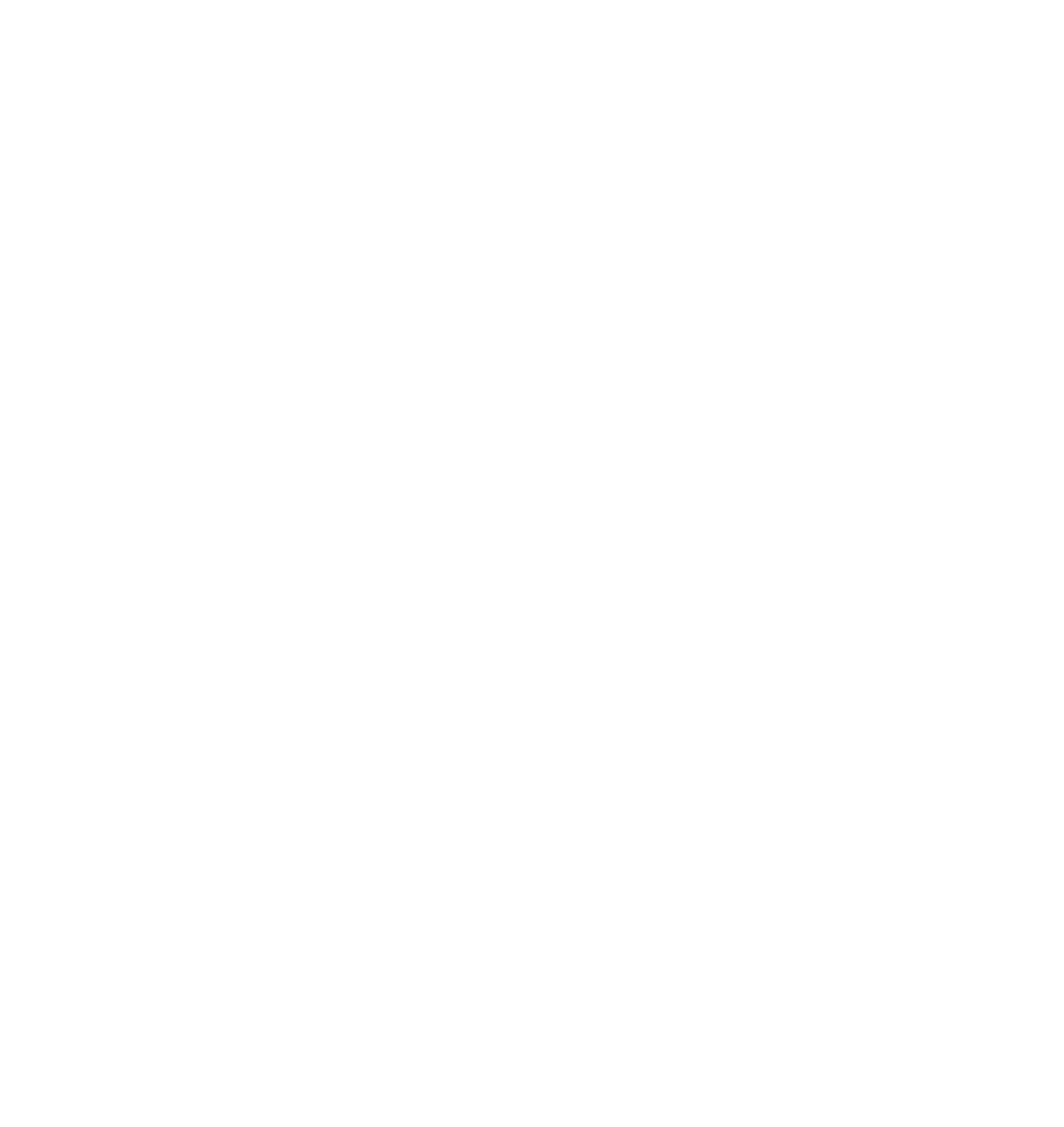 Agentur für Online Marketing, Social Media, Google- und Newslettermarketing in der Ostschweiz, Region Frauenfeld, Winterthur, Wil, St. Gallen & Thurgau.